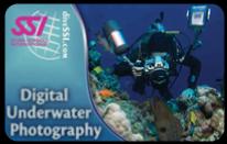 Tečaj specialnosti: Digitalna podvodna fotografija