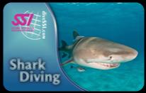 SSI tečaj specialnosti: Potapljanje z morskimi psi