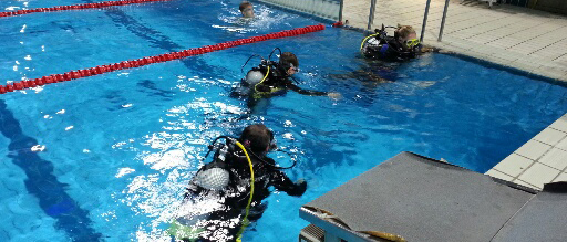 Potapljaške vaje v bazenu 14.02.2014